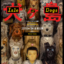 犬ヶ島 - Isle of Dogs